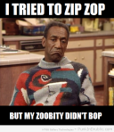 I-Tried-To-Zip-Zop